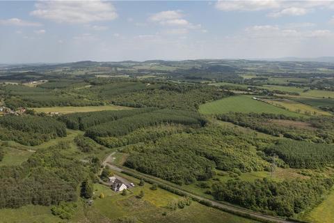 Land for sale - Gateside Woodlands, Falkirk