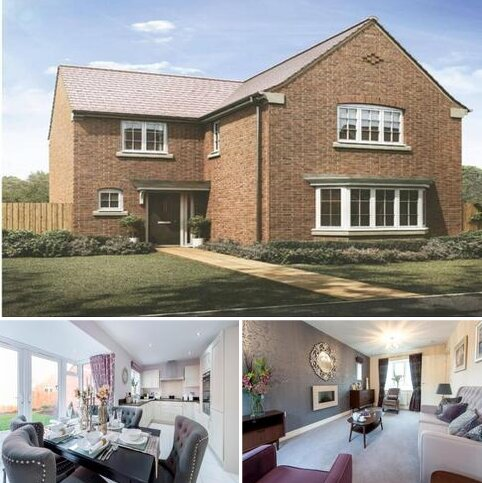 4 bedroom house for sale - Plot 425 at Buttercup Fields, Shepshed LE12