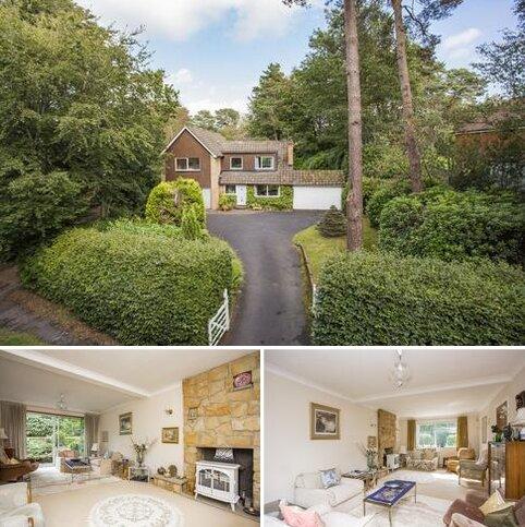 4 bedroom detached house for sale - Goldsmiths Avenue, Crowborough