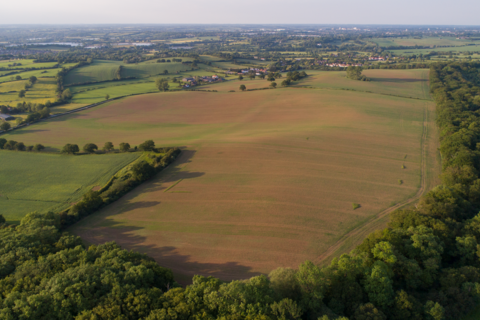 Farm land for sale - Nazeing
