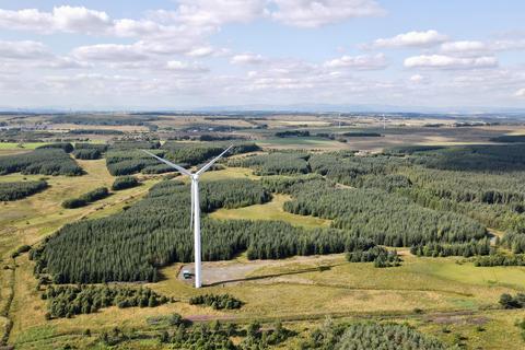 Woodland for sale - Nina Forest & Wind Energy Portfolio, Central Scotland