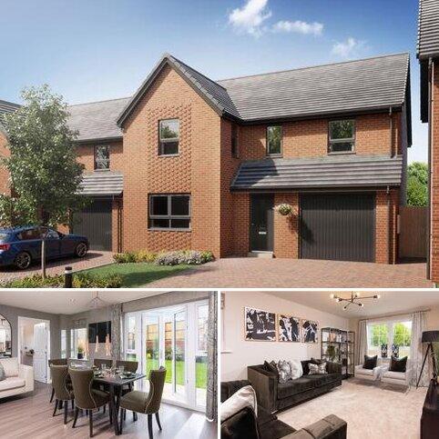 4 bedroom detached house for sale - Birchfield at Glenvale Park Niort Way, Wellingborough NN8