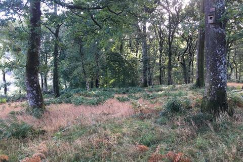Farm land for sale - Oakford, Tiverton