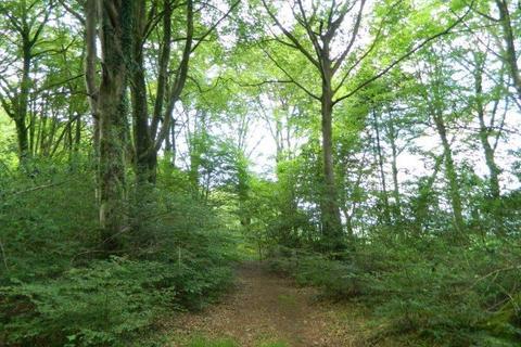 Farm land for sale - Buckland Monachorum, Yelverton