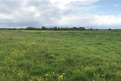 Plot for sale - Catcott Broad Drove, Burtle, Bridgwater, TA7