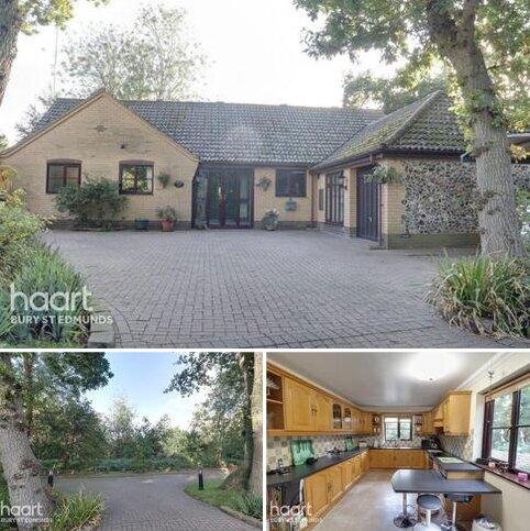 4 bedroom detached bungalow for sale - Stanningfield Road, Great Whelnetham, Bury St Edmunds