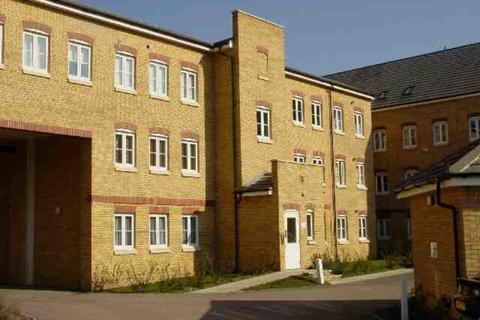 Studio to rent - Tallis Court, Kidman Close