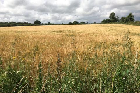 Land for sale - Land At East Lambrook - Lot 2, East Lambrook, South Petherton, Somerset, TA13