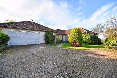 4 bedroom detached bungalow for sale - Ryecroft View, Wooler
