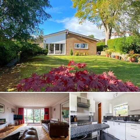 3 bedroom detached bungalow for sale - Beech Hill, Hexham