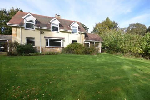 4 bedroom detached house to rent - Mitford, Morpeth, NE61