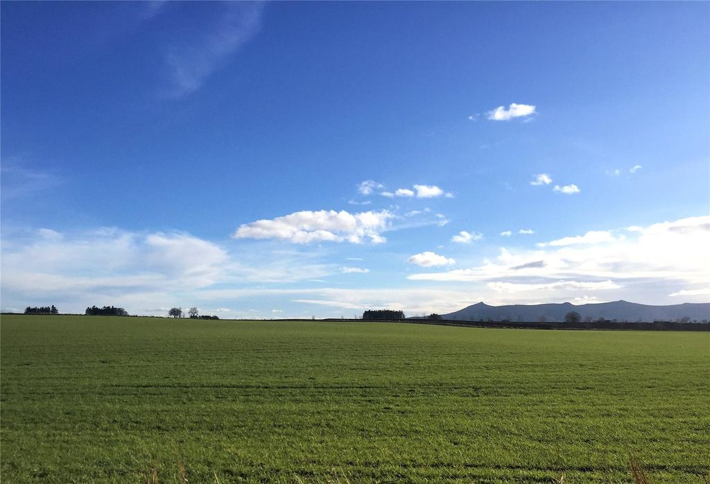 View Of Bennachie
