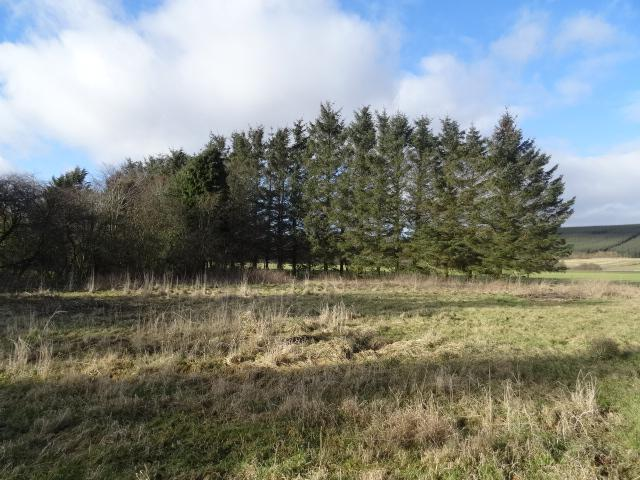 Land Commercial for sale in Lot 4 - Plot 2, Over Tocher Development, Meikle Wartle, Inverurie, Aberdeenshire, AB51