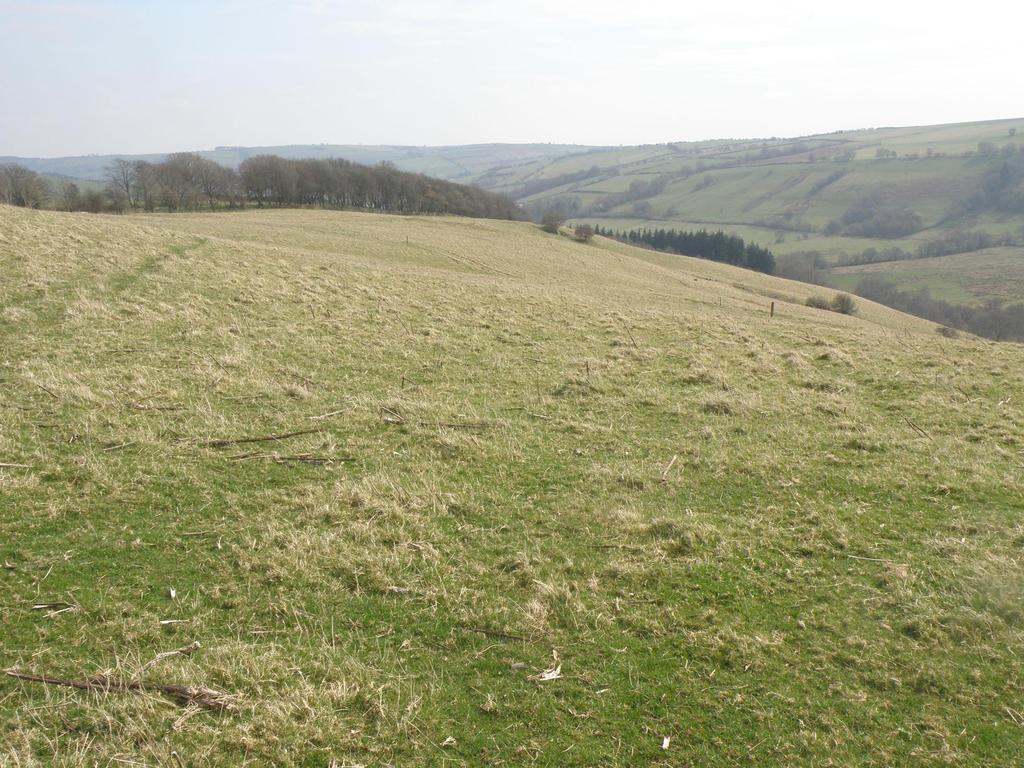 Land Commercial for sale in Newcastle, Craven Arms, Shropshire