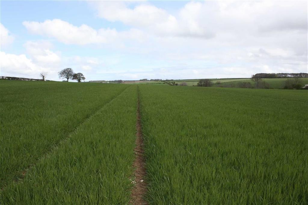 Land Commercial for sale in Driffield, East Yorkshire