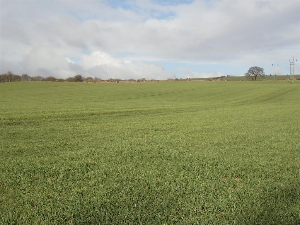 Land Commercial for sale in Potterhouse Lane, Durham, DH1