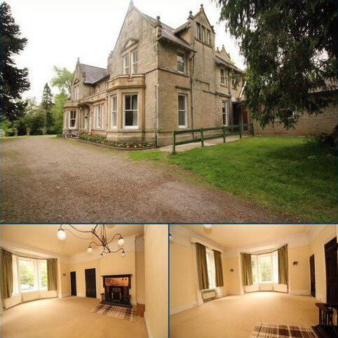 3 bedroom detached house to rent - Allendale