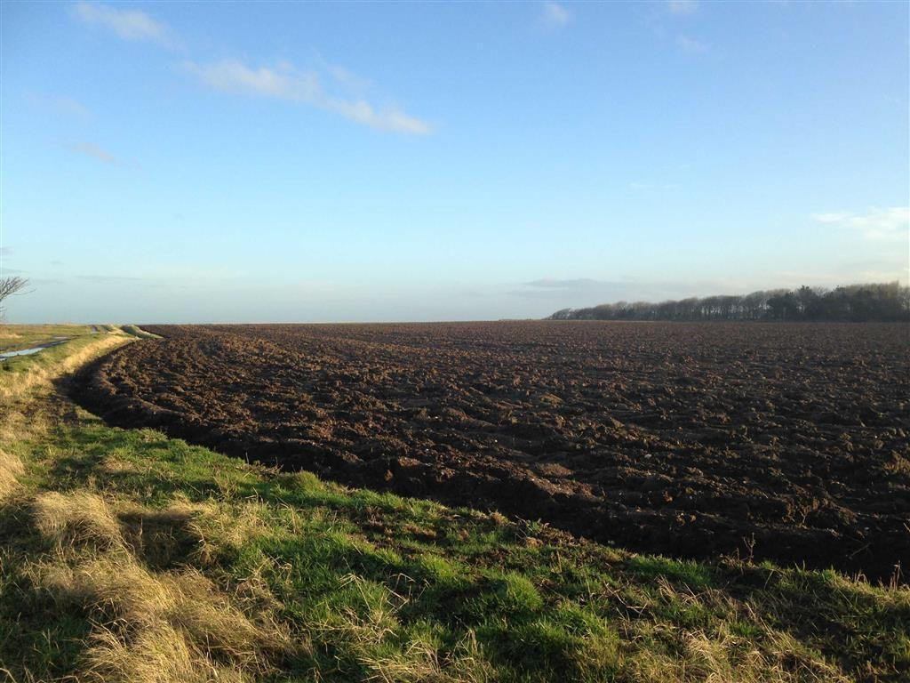 Land Commercial for sale in Grimston, Grimston Hull, East Yorkshire, HU11