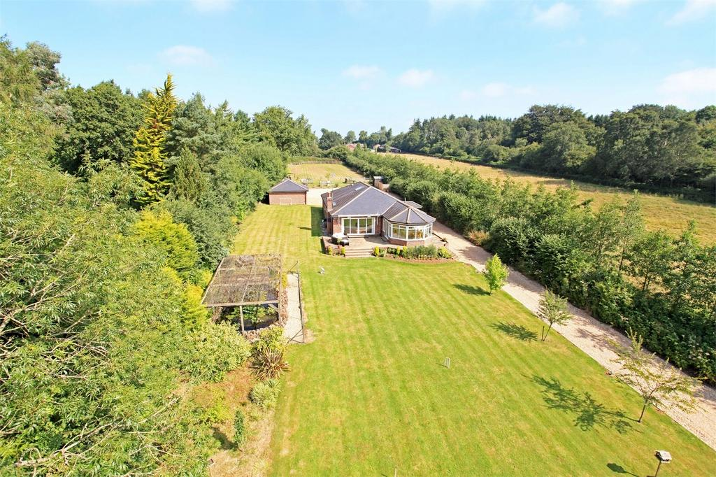 4 Bedrooms Detached Bungalow for sale in Monkwood, Alresford, Hampshire