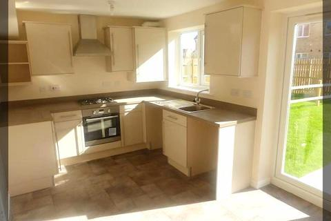 3 bedroom semi-detached house to rent - Chartwell Gardens, Kingswood, Hull, HU7 3FB