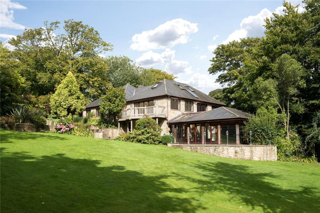 5 Bedrooms Unique Property for sale in Back Lane, Batcombe, Somerset, BA4