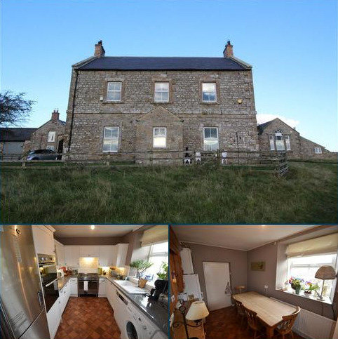 4 bedroom detached house to rent - Colwell, Hexham