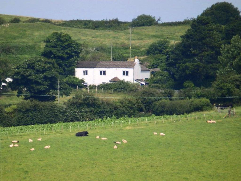 3 Bedrooms Cottage House for sale in Bryniau, Dyserth