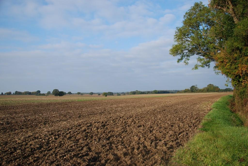 Land Commercial for sale in Lyng, Norfolk
