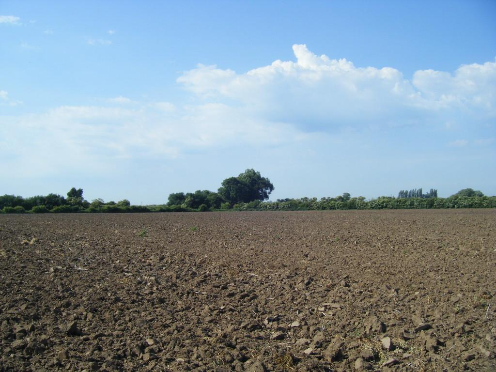 Land Commercial for sale in East Butterwick, Scunthorpe, North Lincolnshire
