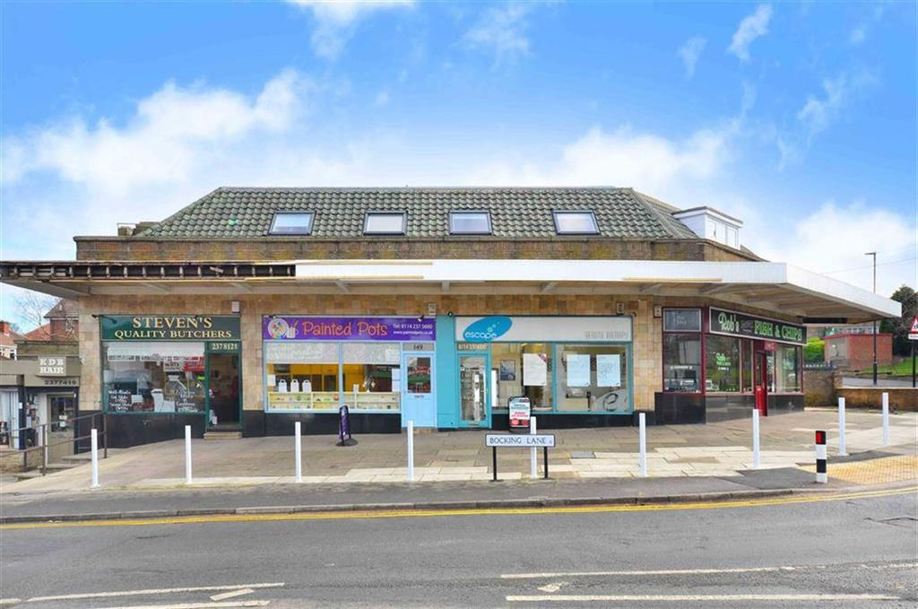 3 Bedrooms Flat for sale in Flat 2, 143a Bocking Lane, Greenhill, Sheffield, S8