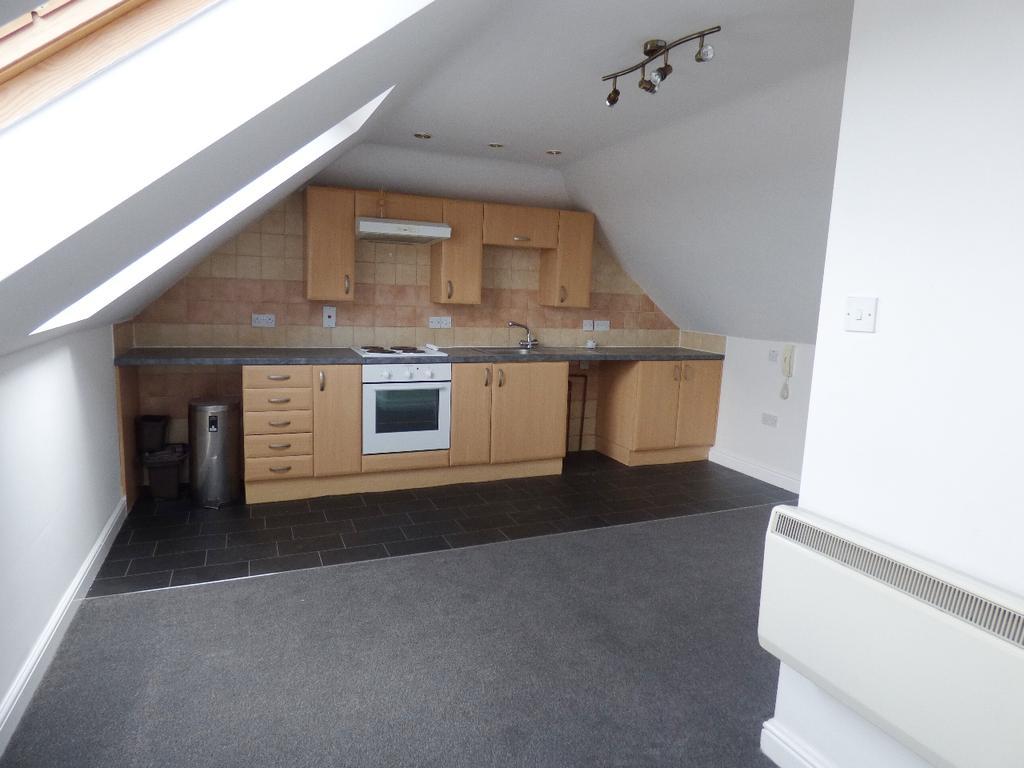 Open plan lounge/kitchen/bedroom