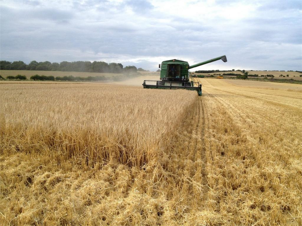 Farm Land Commercial for sale in Wheatley Hill, Durham, County Durham