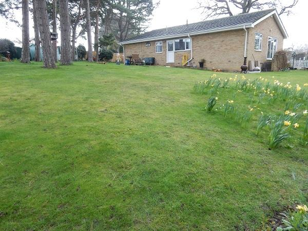3 Bedrooms Detached Bungalow for sale in Clockwood Gardens, Yarm, Stockton on Tees TS15