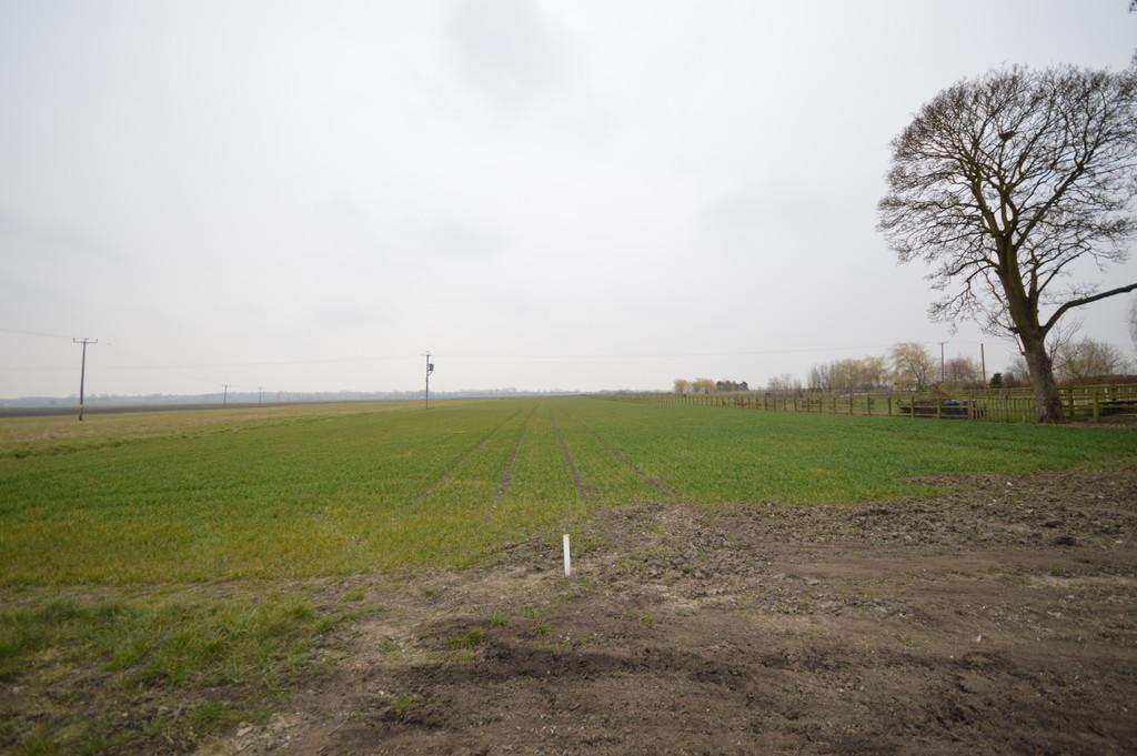 Land Commercial for sale in Cuckoo Road, Stow Bridge, Norfolk