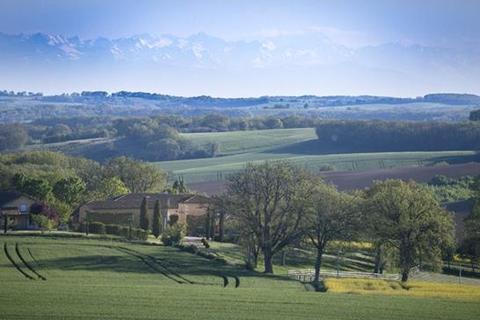 7 bedroom farm house  - Castera Verduzan, Gers, Midi Pyrenees