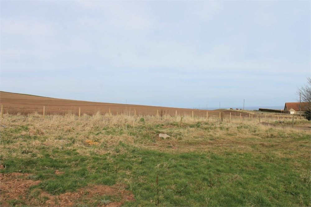 Properties For Sale With Land Scottish Borders