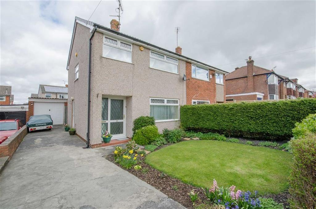 3 Bedrooms Semi Detached House for sale in Mold Road, Mynydd Isa, Mold