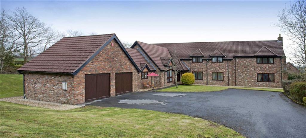 5 Bedrooms Detached House for sale in Biedr-Non, Llannon, Llanelli