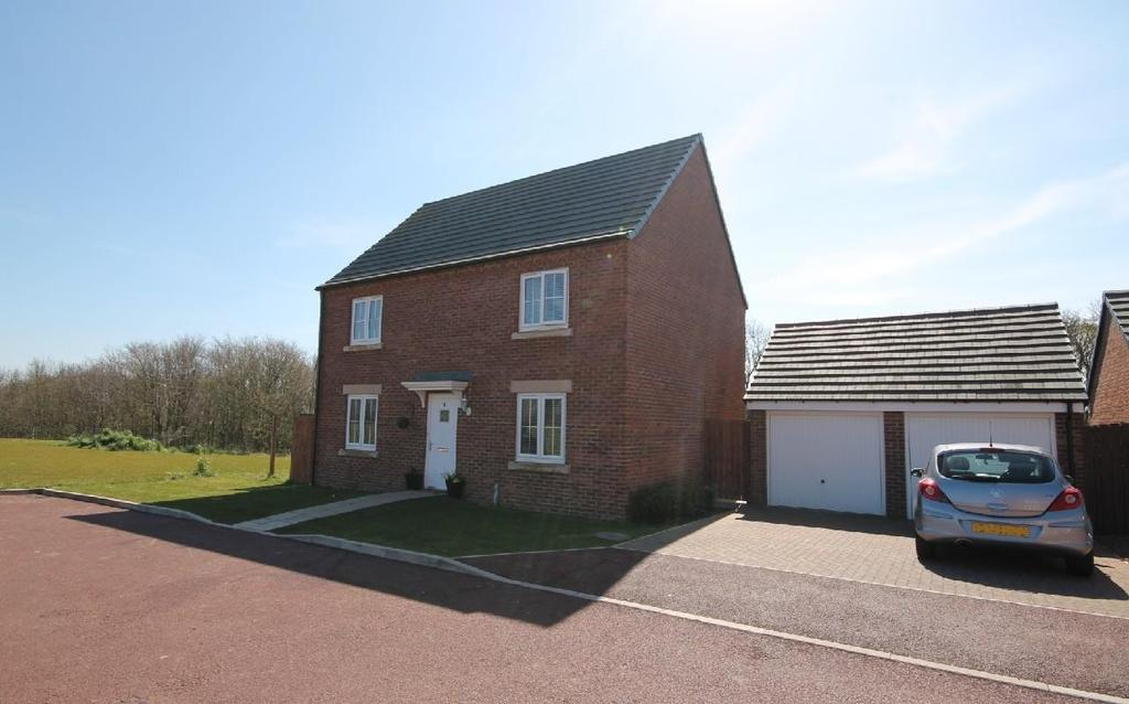 4 Bedrooms Detached House for sale in Skipper Grove, Norton