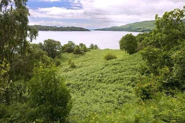 Plot Commercial for sale in Waterfront Living, Bonawe, Argyll, PA37