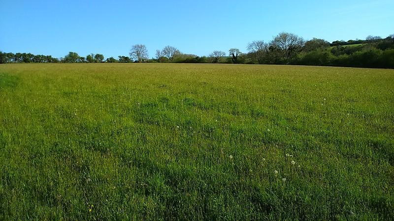 Land Commercial for sale in Golden Lion Fields , Caerwedros, Llandysul, Ceredigion. SA44