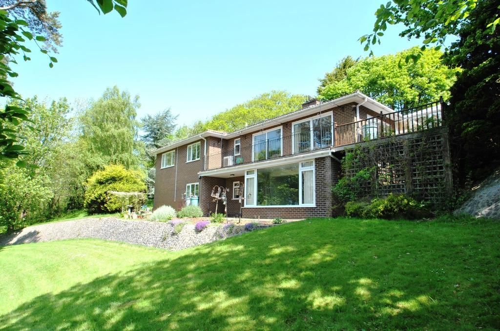 5 Bedrooms Detached House for sale in Rowditch Lane, Kilve