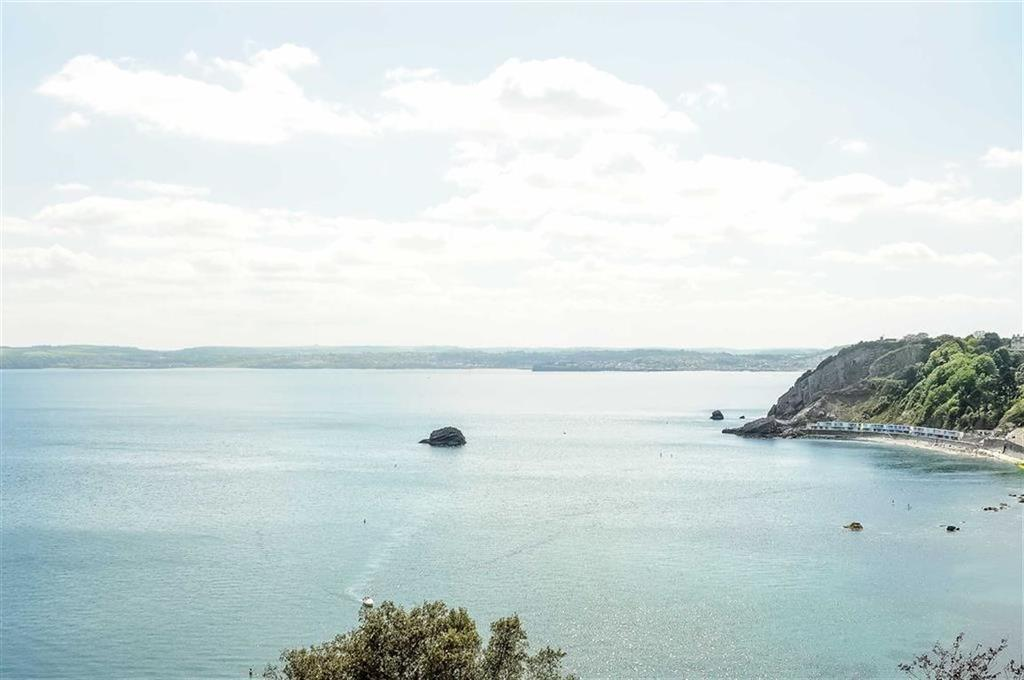 2 Bedrooms Apartment Flat for sale in Ilsham Marine Drive, Kilmorie, Torquay, TQ1