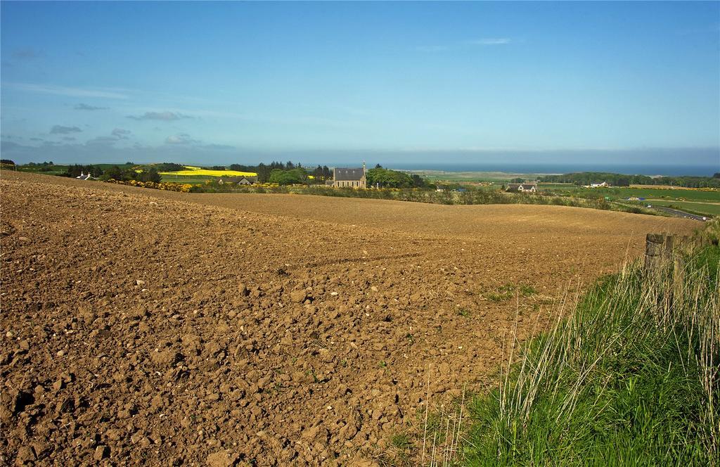 Land Commercial for sale in Balmedie Fields Wood, Belhelvie, Aberdeen, Aberdeenshire