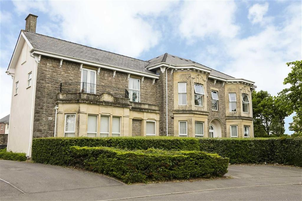 2 Bedrooms Flat for sale in Larkfield House, Chepstow, Monmouthshire