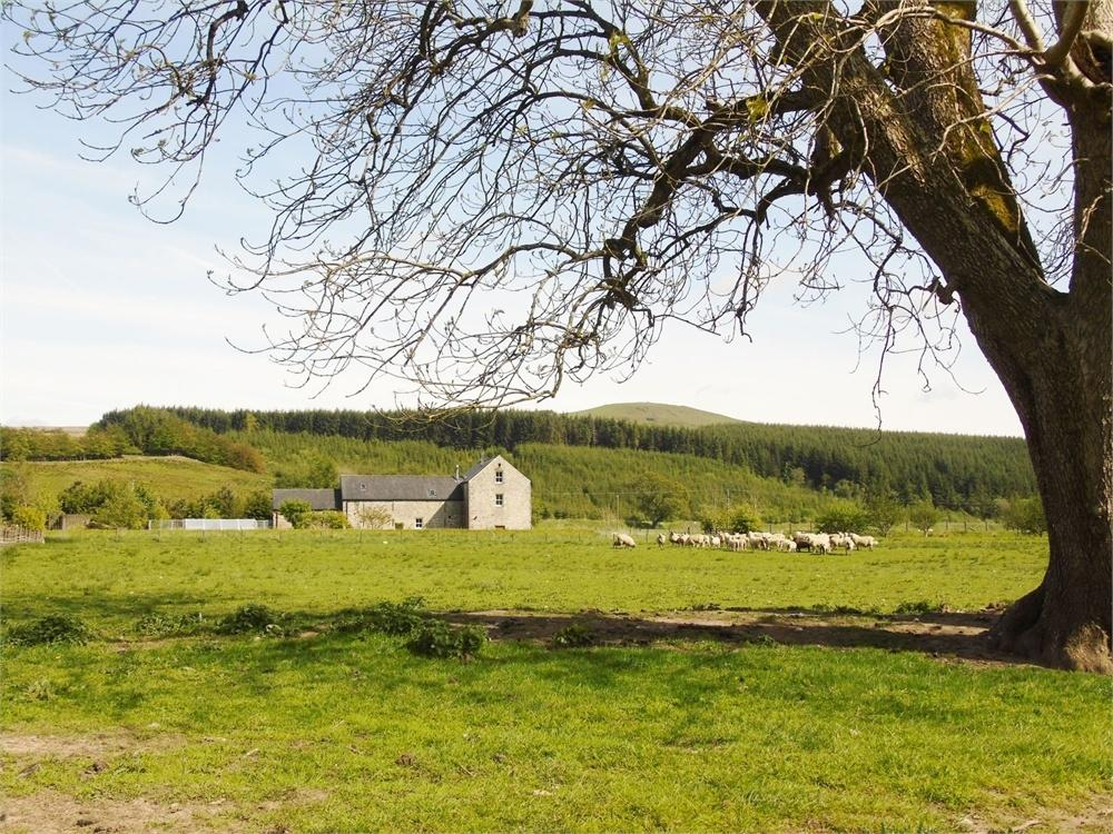 4 Bedrooms Country House Character Property for sale in Mangerton, Newcastleton, Scottish Borders