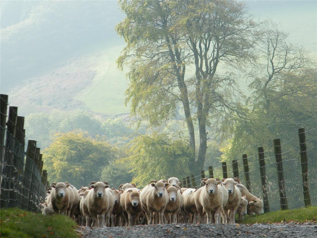 Horsecombe Farm (via Greenslade Taylor-Hunt)