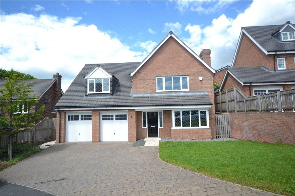 4 Bedrooms Detached House for sale in Carr Bridge Close, Eaglescliffe, Stockton-On-Tees