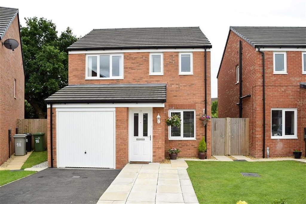 3 Bedrooms Detached House for sale in Jubilee Pastures