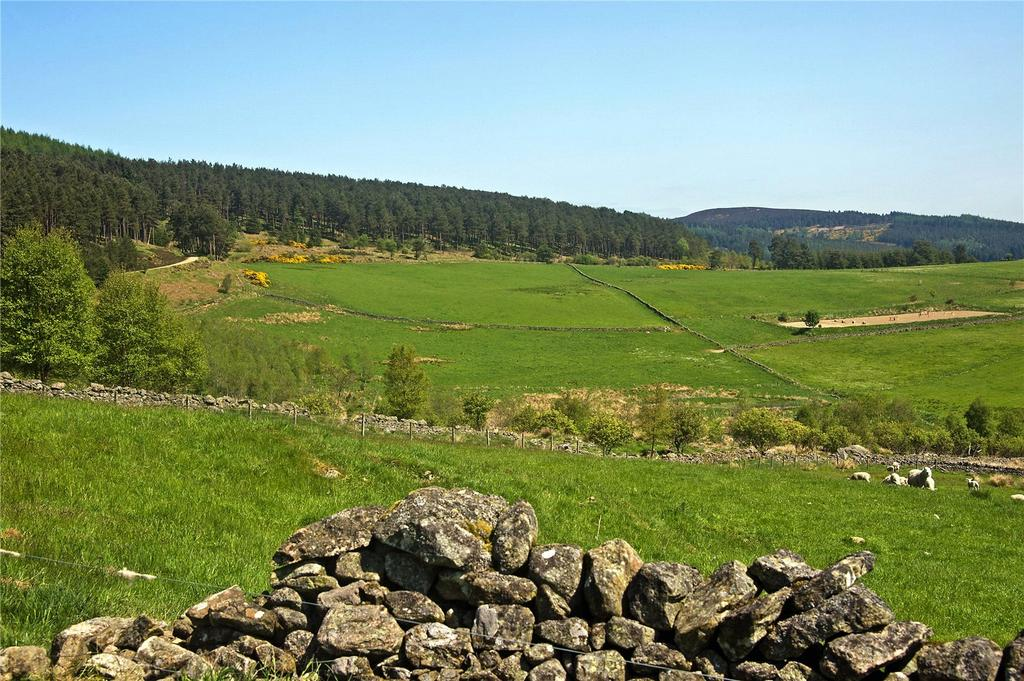 Land Commercial for sale in Pitfichie Fields - Whitehills, Monymusk, Inverurie, Aberdeenshire